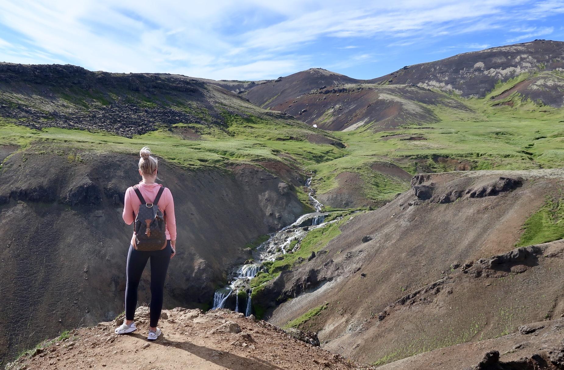 Sumardagur í Reykjadal