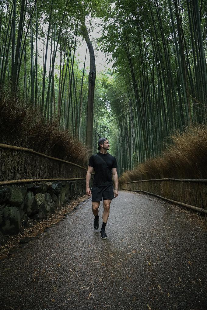 JAPAN: BAMBUS SKÓGUR