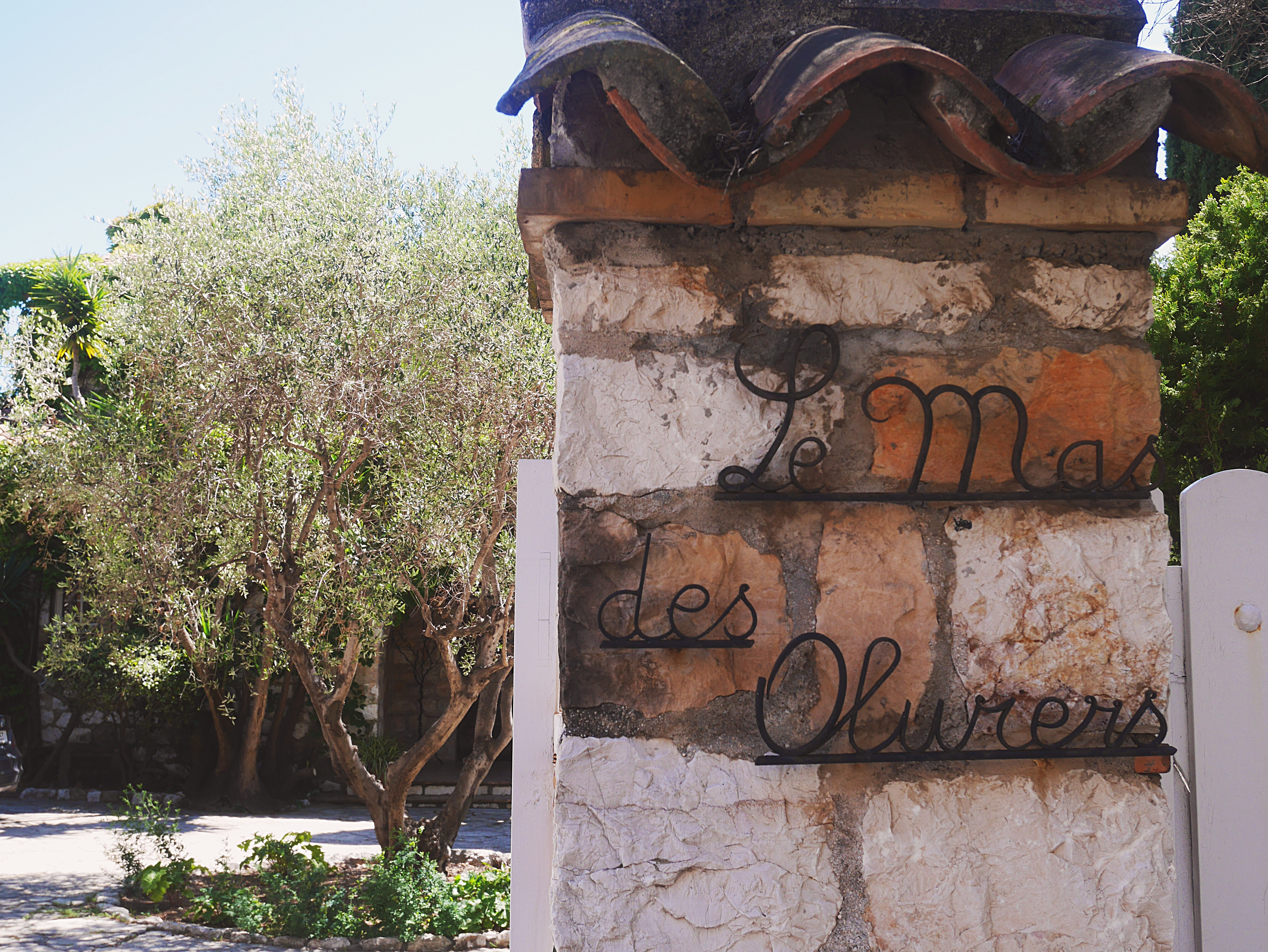 Trendnet » Welcome to \'Le Mas Des Oliviers\'