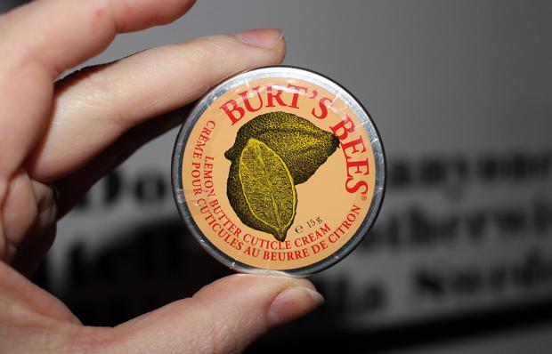 burts3