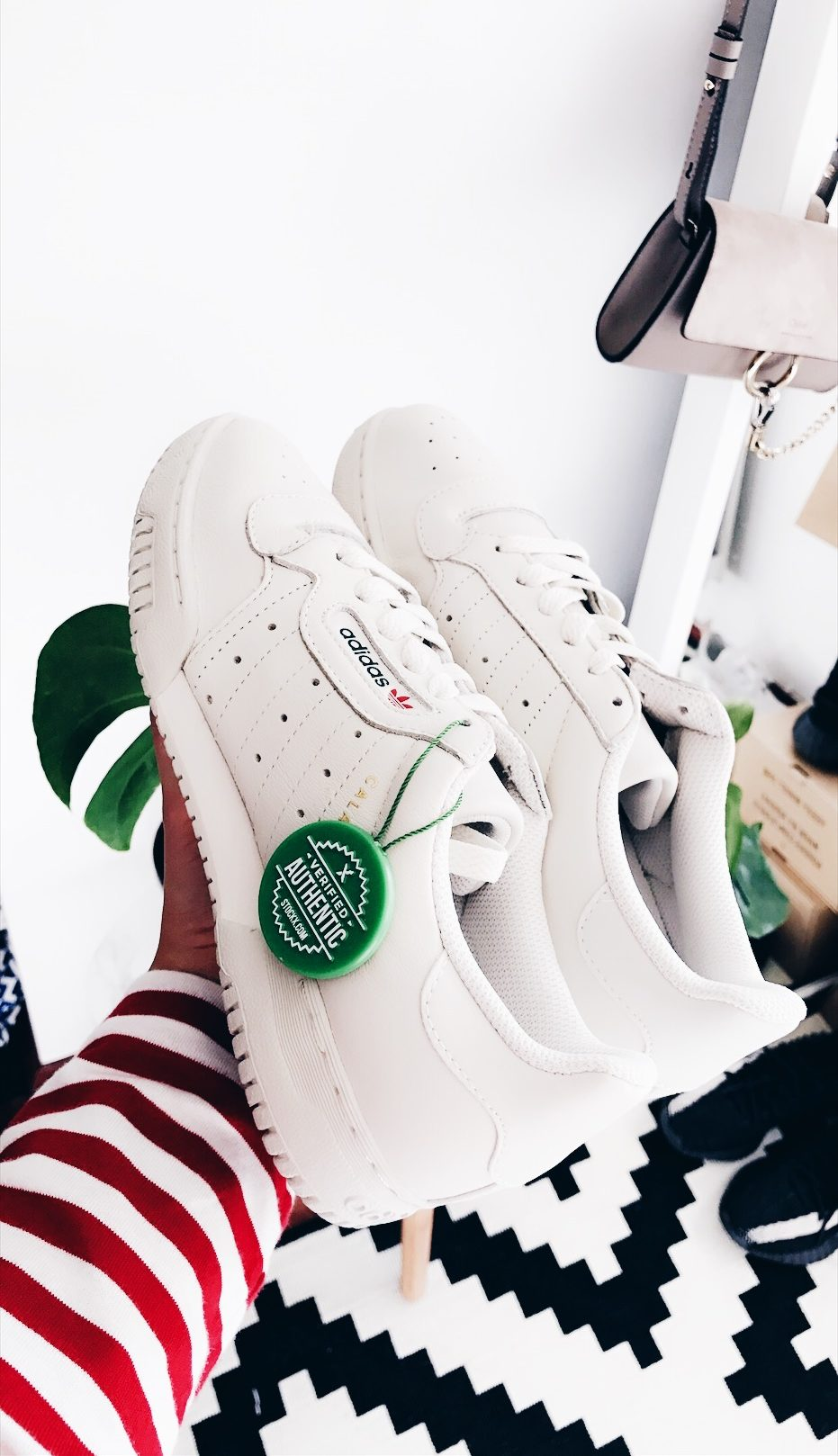 NEW IN: POWERPHASE